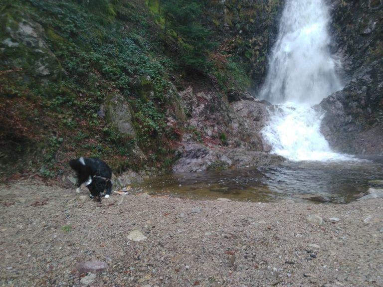 La cascade du Bockloch est une chute d'eau du massif des Vosges située sur la commune de Kruth sur la rive droite du lac de Kruth-Wildenstein.
